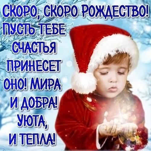 Стаусы на Рождество