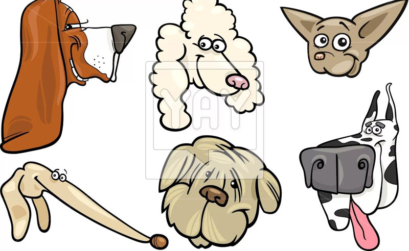 рисунок головы собаки