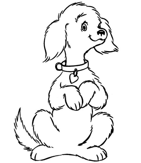как нарисовать собаку на задних лапах