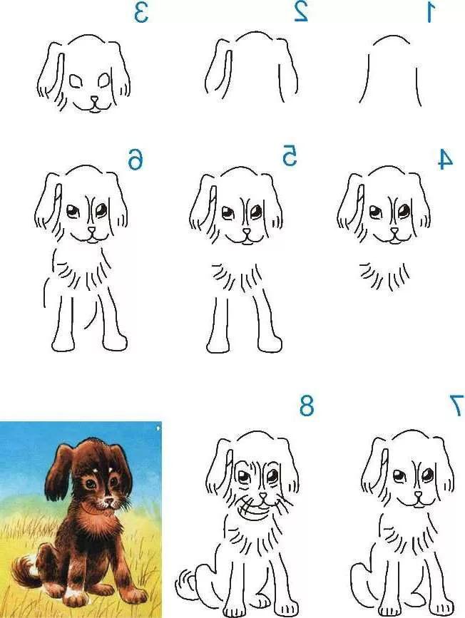 рисунок собаки по шагам