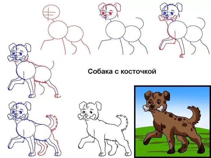 собака с косточкой