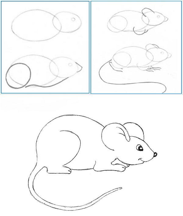 как нарисовать мышку пошагово