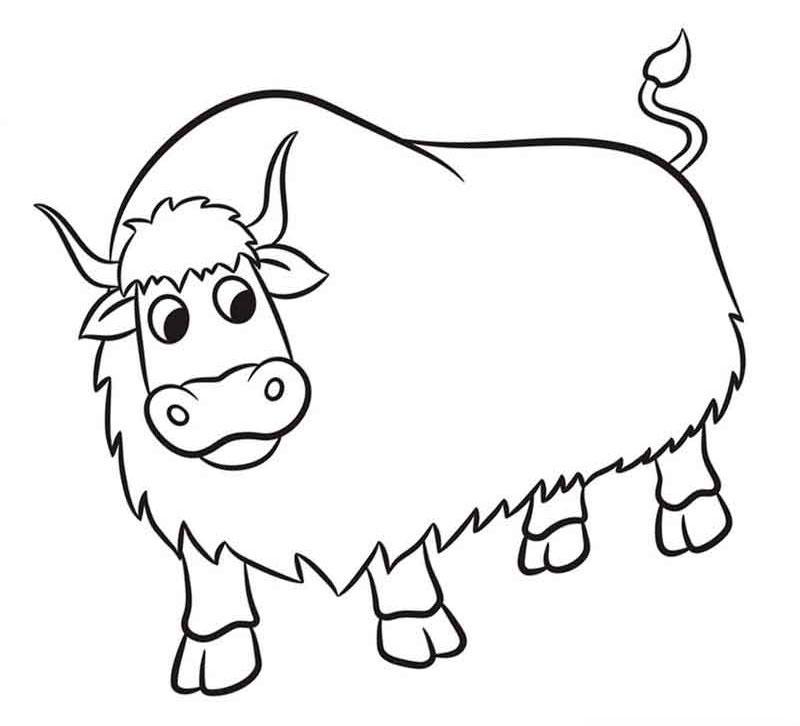 Как нарисовать большого быка