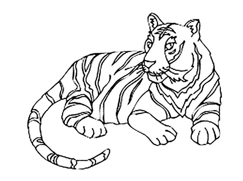 Рисунок лежащего тигра